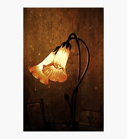 ~ Lily of the Lamp ~ Photographic Print