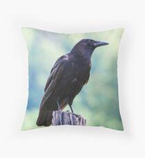 Cades Cove Crow Throw Pillow