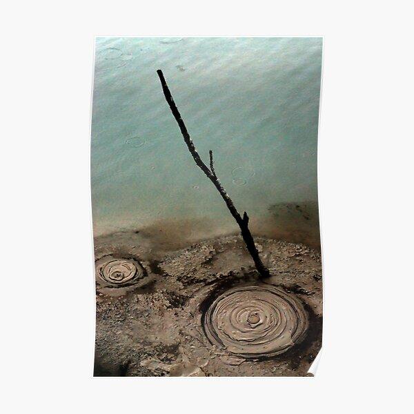 Natural Circles Poster