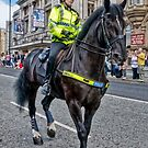Police Horse by Brian Tarr