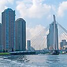 Modern Tokyo, Sumida River, Japan. by johnrf
