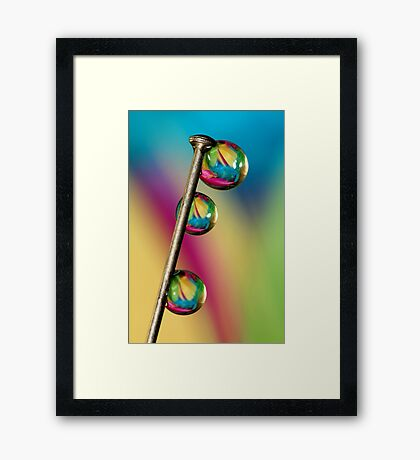 Pin Drop Framed Print
