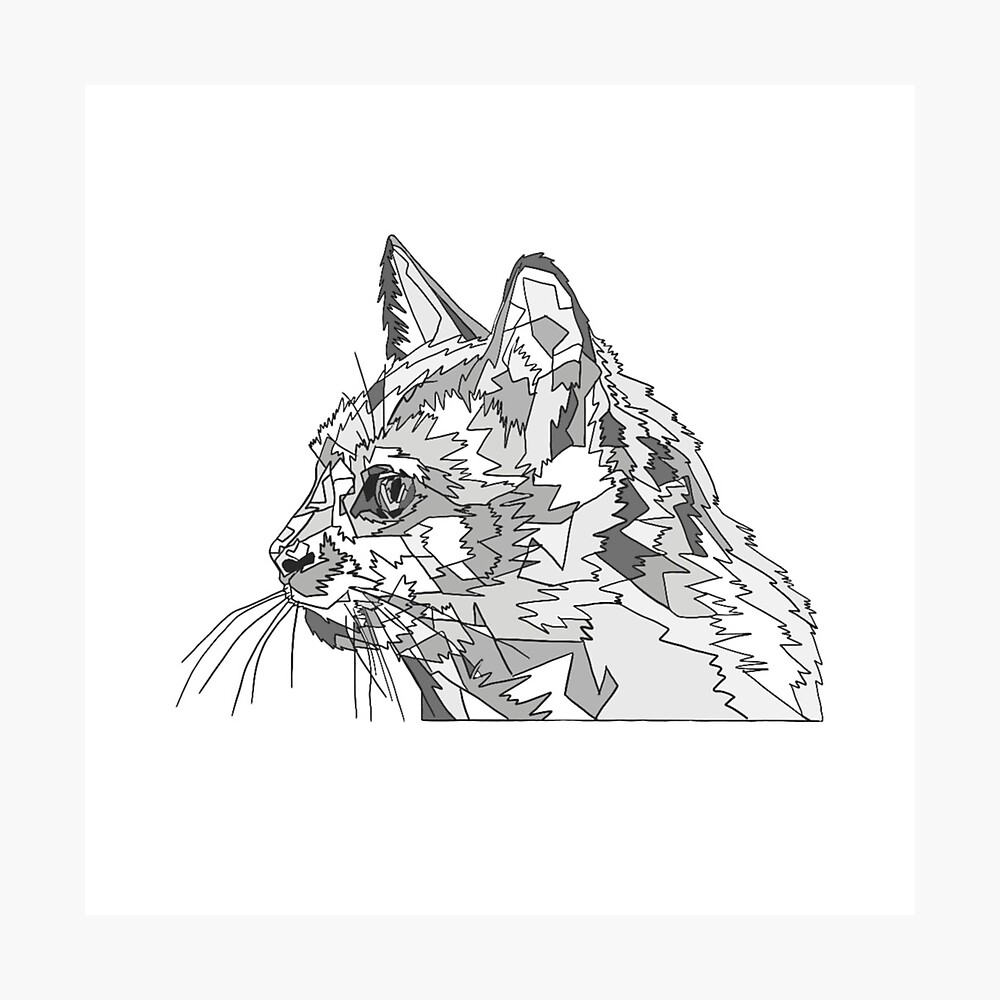 Geometric Cat Photographic Print