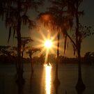 Sunrise Earth by Procuras
