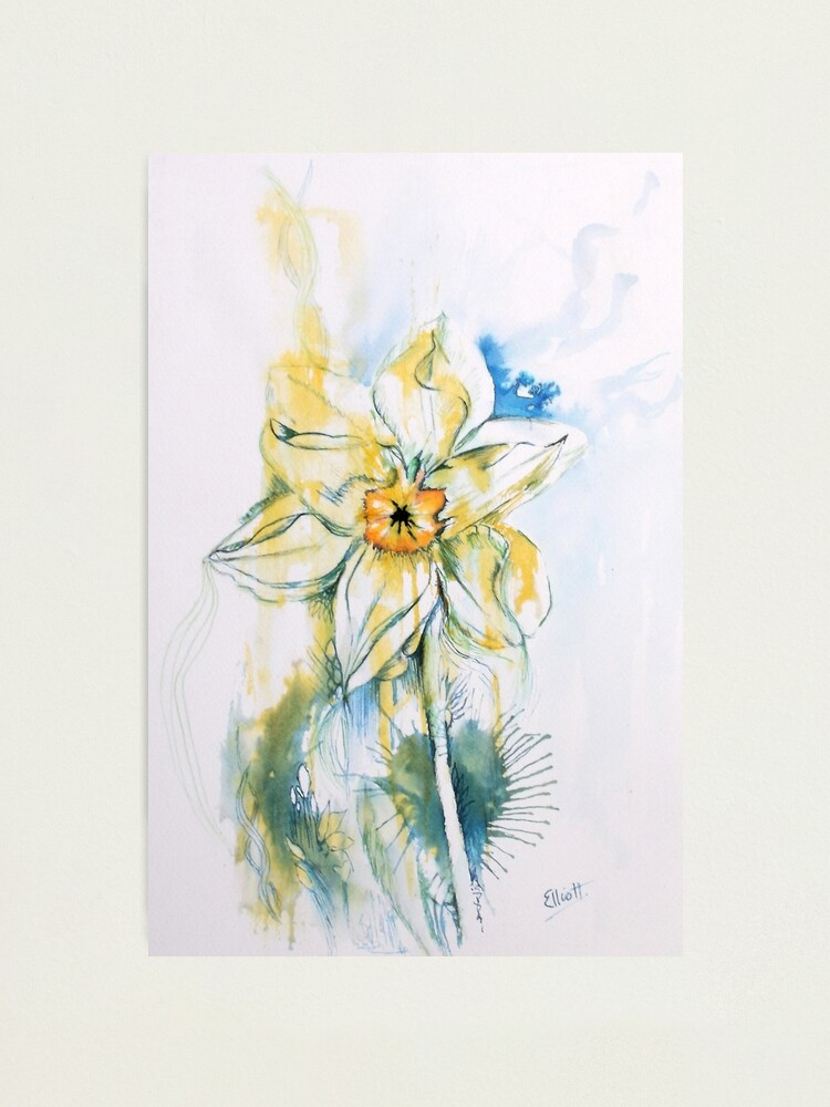 Alternate view of Daffodil Dance Photographic Print