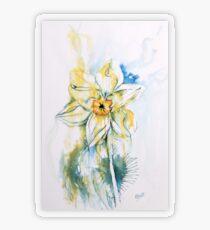 Daffodil Dance Transparent Sticker