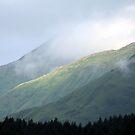 Kodiak's Uplands by A.M. Ruttle