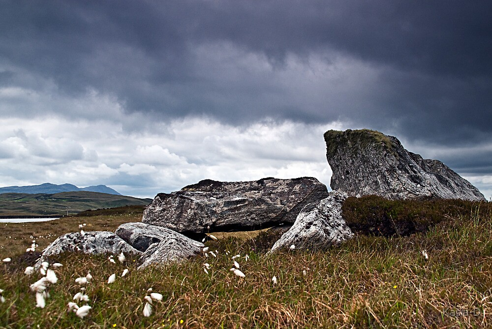 North Uist: The Stones by Kasia-D