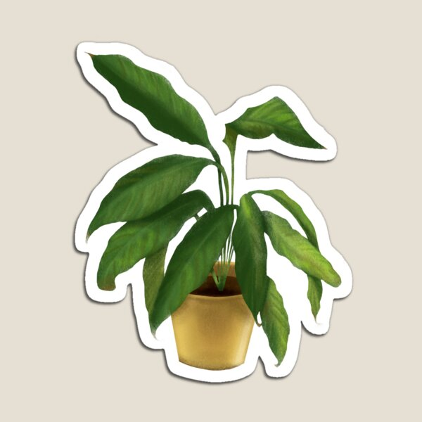 Peace Lily Magnet