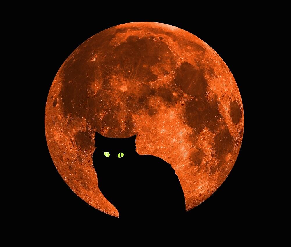 Black Cat | Full Blood Moon | Halloween by Kittyworks