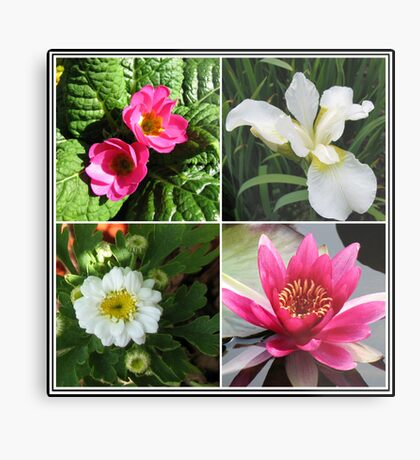 Flower Collage Featuring Deep Pink and White Flowers Metallbild