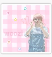 pink: Woozi Sticker