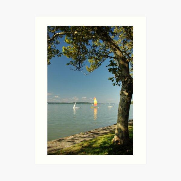 Summer at Lake Balaton Art Print