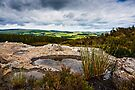 Harbottle Lough, Coquetdale, Northumberland, UK by David Lewins
