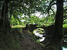 Robbers Bridge by WatscapePhoto