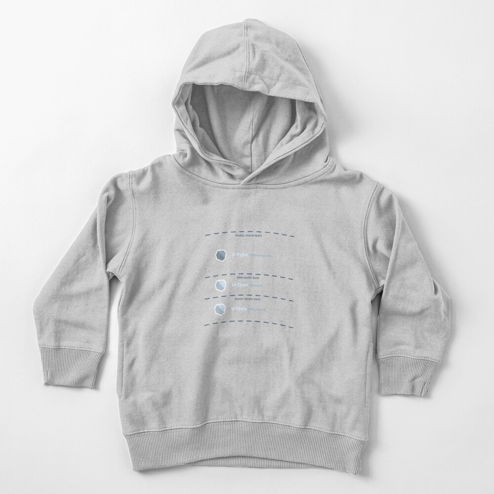 Asteroid Main Belt Compositional Classifications Toddler Pullover Hoodie