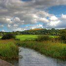 West Lothian Landscape by Tom Gomez