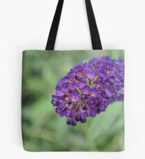 The Fairest of Them All Tote Bag