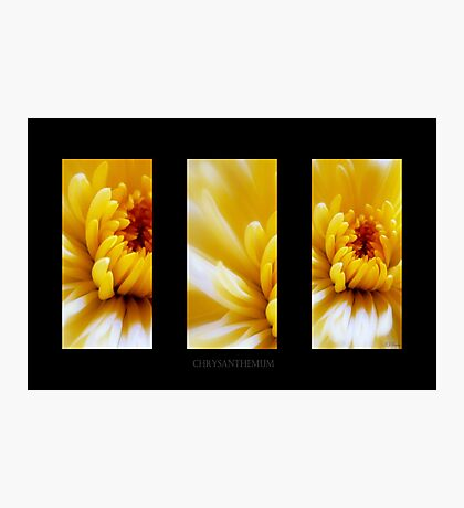 Yellow Sunbeams Photographic Print