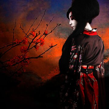 Geisha with Quince - resubmit by ImagesFX