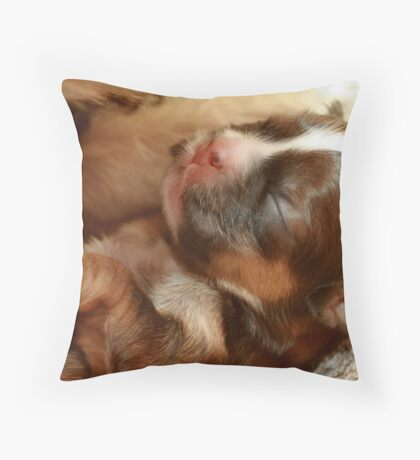 I am 3 days old!!!! Throw Pillow
