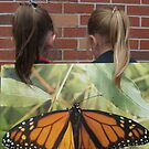 The butterfly by Julietmsampson
