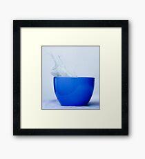 Splishy Splashy Framed Print