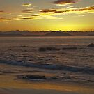 Sunrise Golden by Priceless