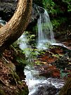 Mohawk Falls (orton) by Aaron Campbell