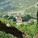 Theth/Albania by Petrit  Metohu