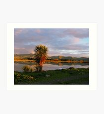 Reflections in a Pond - on a Journey in Christchurch - New Zealand Art Print