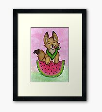 Melon Coyote - A Summertime Treat! Framed Print