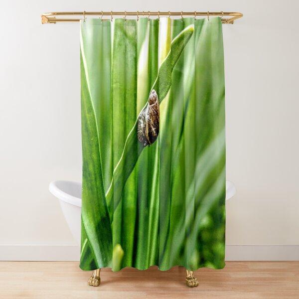 Snail on a daffodil stalk Shower Curtain