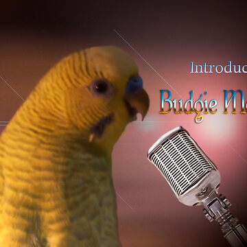 Budgie Mercury by aboveparr
