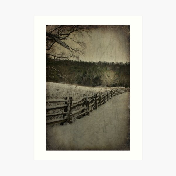Along the Split Rail Fence Art Print