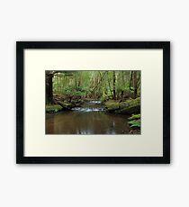 Tranquil Stream Framed Print