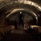 Stone Hill wine cellar by leesm19
