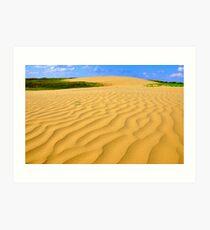 The Great Sandhills Art Print