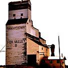 Fox Valley Grain Tower by Ellinor Advincula