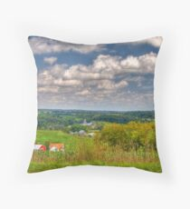 Wisconsin Landscape Throw Pillow