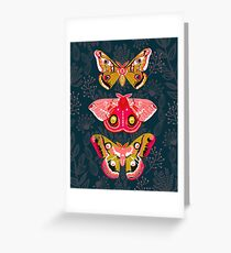 Lepidoptery No. 4 by Andrea Lauren Greeting Card