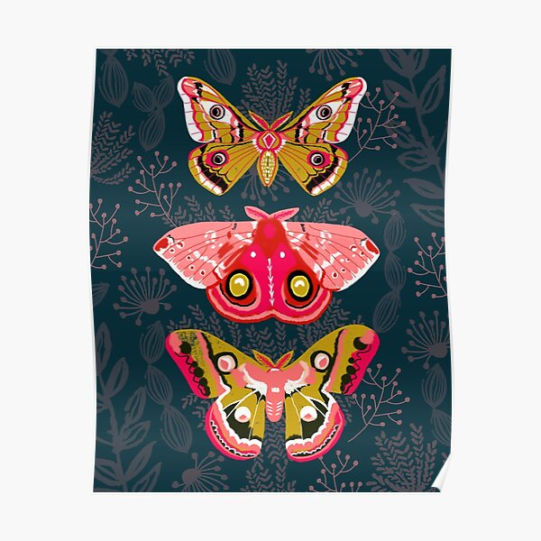Lepidoptery No. 4 by Andrea Lauren Poster