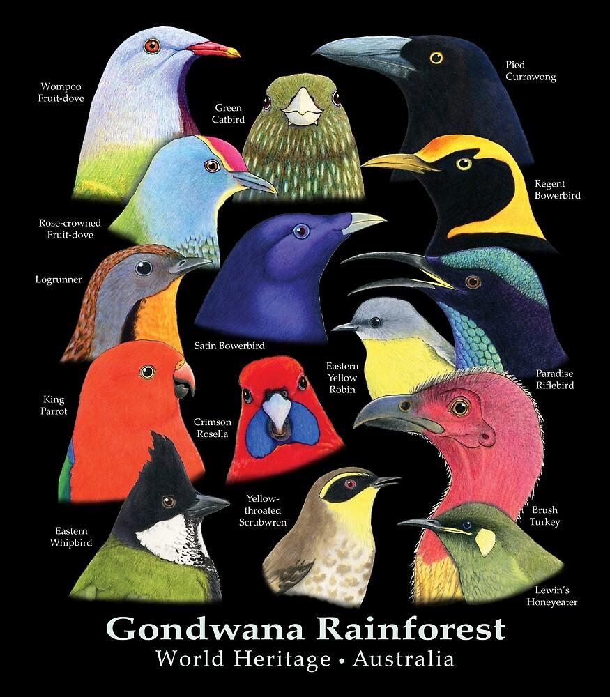 Gondwana Rainforest Birds of Australia - Raising funds for BirdLife Australia by Paula Peeters