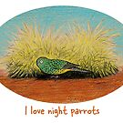I love night parrots - Raising funds for Bush Heritage Australia by Paula Peeters