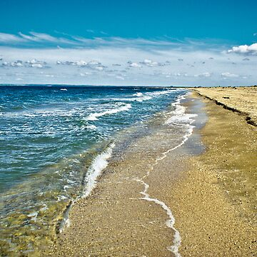 seascape-September, the Crimea, Shelkino by donemonic