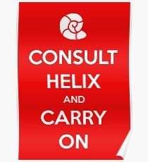 Consult Helix, Carry On Poster