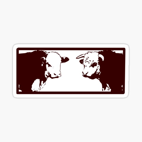 Hereford and Poll Hereford Bulls Sticker