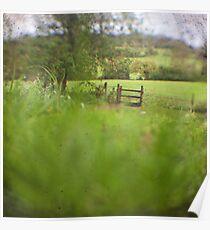 Empty field Poster