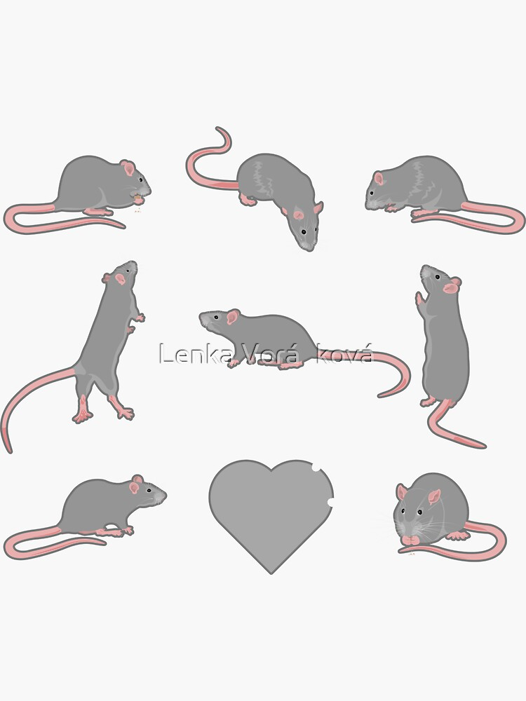 Gray rats in square by Trin4ever