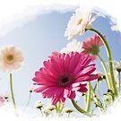 Spring Flowers by maf01